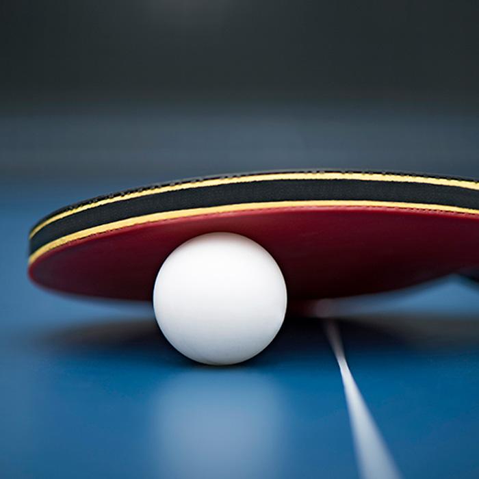 Table Tennis in East Grinstead