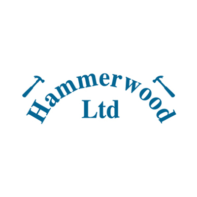 cricket-club-sponsor-hammerwood