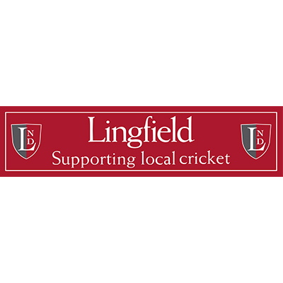 cricket-club-sponsor-lingfield-school